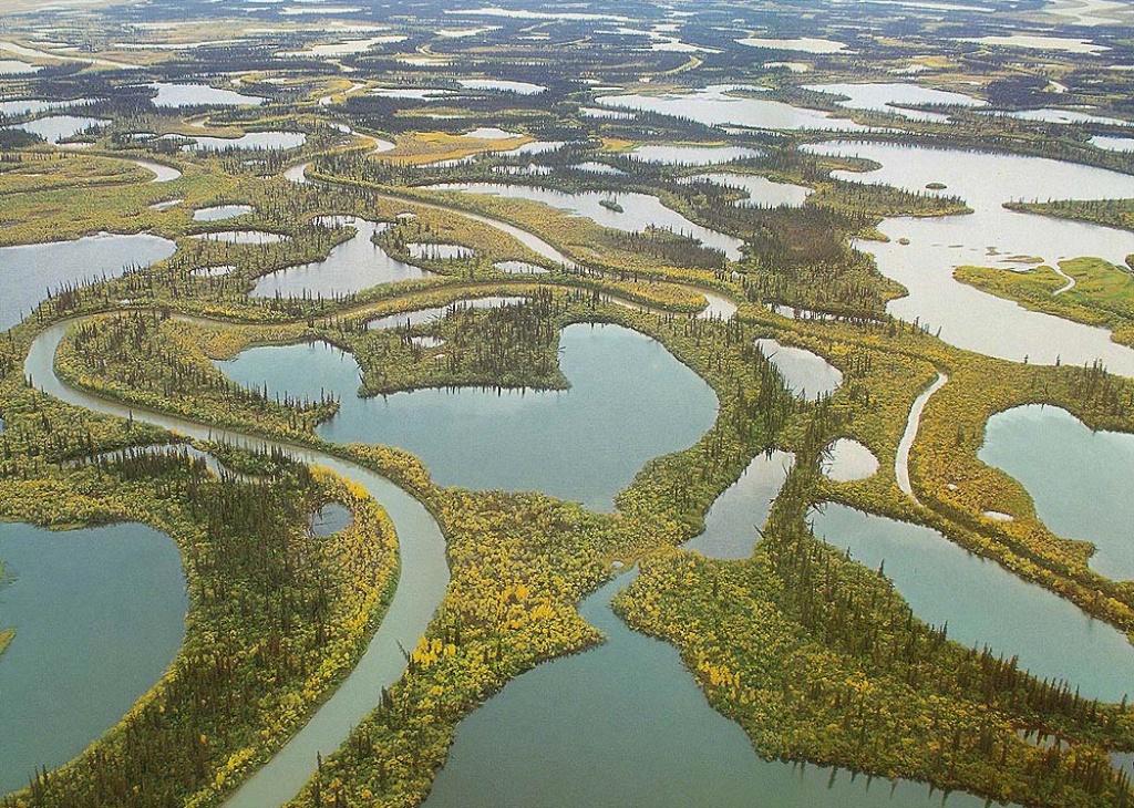 Река маккензи фото
